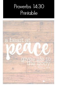 proverbs 14:30 printable | fixyoureyesonhim.com #selfcare #body #mind #spirit #mission